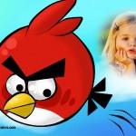 Fotomontaje de Angry Birds gratis